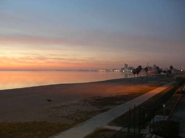 Great Beachfront Condo For Your Vacation!  #3103